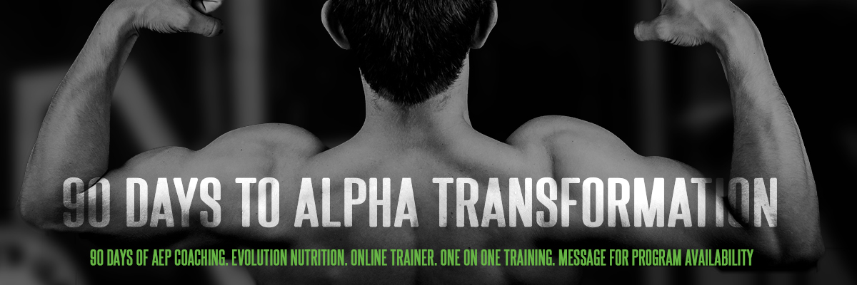 90 DAYS TO ALPHA TRANSFORMATION